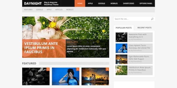 DayNight là một chủ đề WordPress